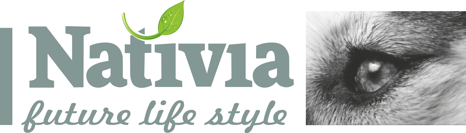 logo Nativia